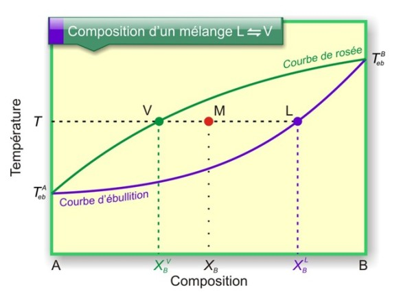 Figure 18 : Composition d'un mélange binaire d'un mélange liquide en équilibre avec sa vapeur. Au point M, à la température T, la composition de la vapeur est donnée par l'abscisse du point V et la composition du liquide par l'abscisse du point L.
