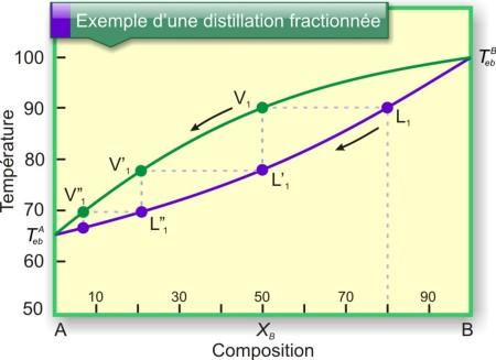 Figure 23 : Diagramme binaire d'un mélange à miscibilité totale : évolution de la composition du mélange au cours d'une distillation fractionnée. L1 : liquide au début de l'ébullition ; V1 : vapeur formée ; L'1, L''1, V'1 et V''1 : évolution de la composition du mélange dans la colonne de fractionnement (sens des flèches).