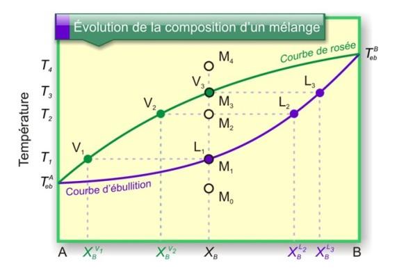 Figure 19 : Évolution de la composition de mélange liquide binaire.