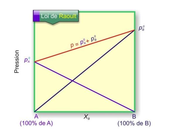Tension de vapeur d'une solution idéale en fonction de sa composition molaire. En bleu : pression partielle de vapeur de A. En mauve : pression partielle de vapeur de B. En rouge : Tension de vapeur totale du mélange. La tension de vapeur d'un mélange binaire idéal est proportionnelle aux fractions molaires des composés. La pression totale de la vapeur est la somme des deux pressions