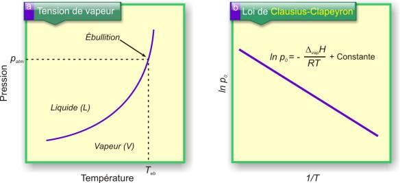 Figure 13. a) Variation de la tension de vapeur d'un liquide en fonction de la température. b) Tracé de la relation de Clausius-Clapeyron : ln p0 = f(1/T) avec Delata(vap)H, l'enthalpie de vaporisation (ou chaleur  latente de fusion, Lv).